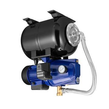 Daikin VD315A1R-95 piston pump