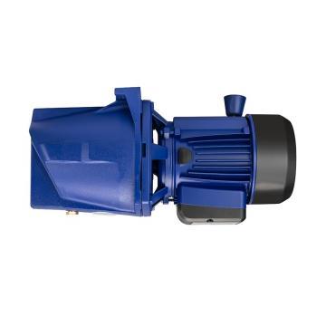 Daikin VZ80C24RJPX-10 Piston Pump