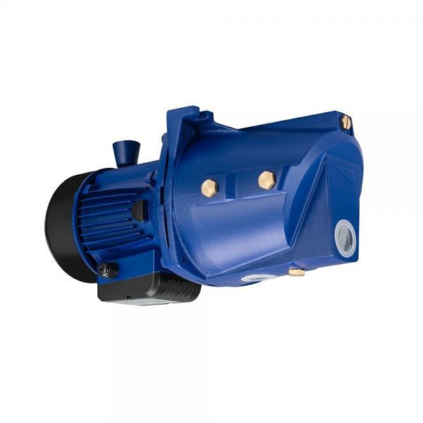 Daikin VZ80A3RX-10 Piston Pump #1 image