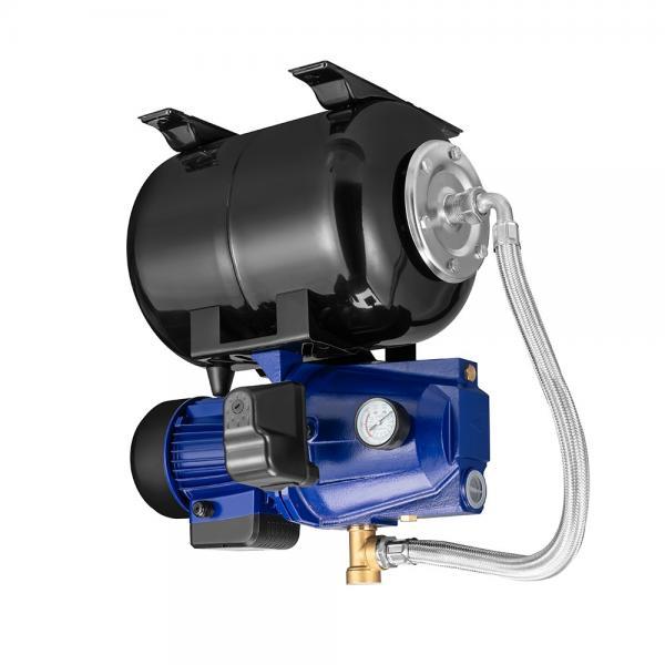 Daikin VD315A1R-95 piston pump #1 image