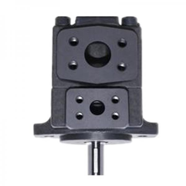 Yuken PV2R12-10-47-L-RAA-40 Double Vane Pumps #1 image